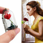 Newest Beauty and the Beast Glass Necklace Rose Vial Flower Dome Gifts
