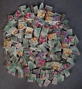 Image Is Loading Sango 034 Blossom Fl Amp Berry Mosaic