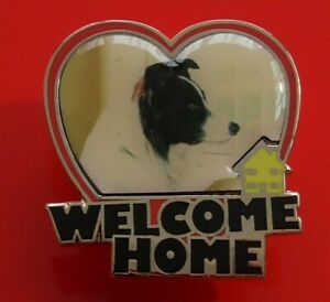 Danbury-Mint-Border-Collie-Dog-Pin-Badge-Welcome-Home-Dogs-Scottish-Breed