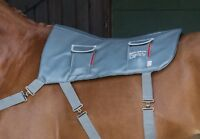 Equilibrium Therapy Horse Massage Back Pad