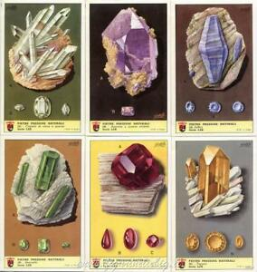 kaartspellen Figurine Lavazza serie n°62 Frutta Esotiche ANNO 1952 Chromo Overig