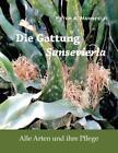 Die Gattung Sansevieria von Peter A. Mansfeld (2013, Taschenbuch)