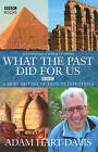 What the Past Did for Us by Adam Hart-Davis (Hardback, 2004)