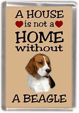 "Beagle Dog Fridge Magnet ""A HOUSE IS NOT A HOME"" by Starprint"