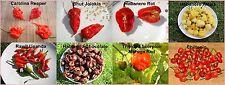 8 Sorten Chili Samen Superhot Carolina Reaper, Bhut Jolokia Moruga Habanero je10