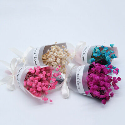 Gypsophila Natural Dried Flowers For Wedding Sky Star Photo Decoration Great #ms