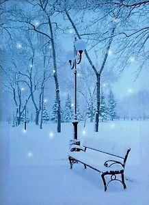 Tela-Parete-Natale-splendide-foto-da-neve-con-luci-a-LED-scena-BANCO-DELLE-NEVI