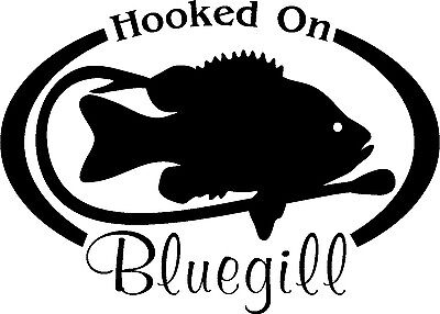 HOOKED ON TROUT Fresh water fish fishing trip lure Car Wall Decal//Sticker Lrg