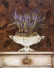 Janet Tava Tureen Hyacinth Poster Kunstdruck Bild 50x40cm - Kostenloser Versand