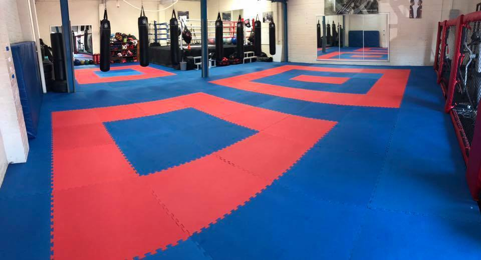 20mm Premium HD  Martial Arts Jigsaw Mats 1m2 Red bluee Karate TKD Yoga Exercise