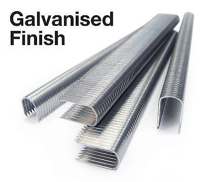 1000x CT-60 14mm Galvanised Cable Staples / Rapesco CT10 T25 - 36 Type
