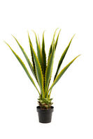 Realistic Foliage Potted Artificial X-large 110cm Agave Plant