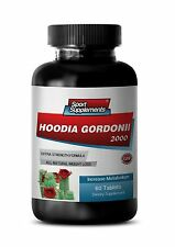 Pure Hoodia - New Hoodia Gordonii 2000mg - Healthy Weight Management 1B