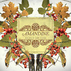 Solace in Sore Hands by Amandine (CD, Apr-2007, FatCat Records (England))