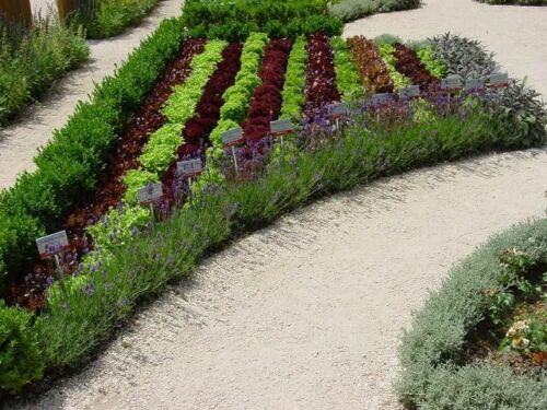 Wegbegrenzung Beeteinfassung Rasenkante Gartengestaltung