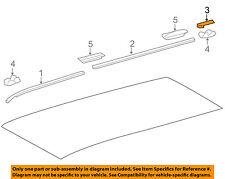 GM OEM Roof-Drip Molding Left 95276291