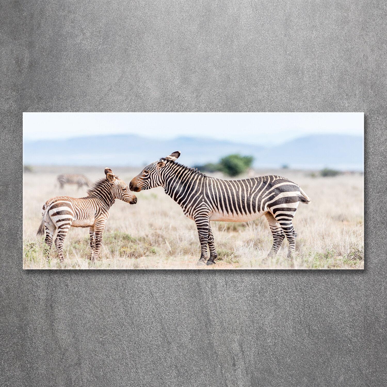 Glas-Bild Wandbilder Druck auf Glas 120x60 Deko Tiere Zebras Berge
