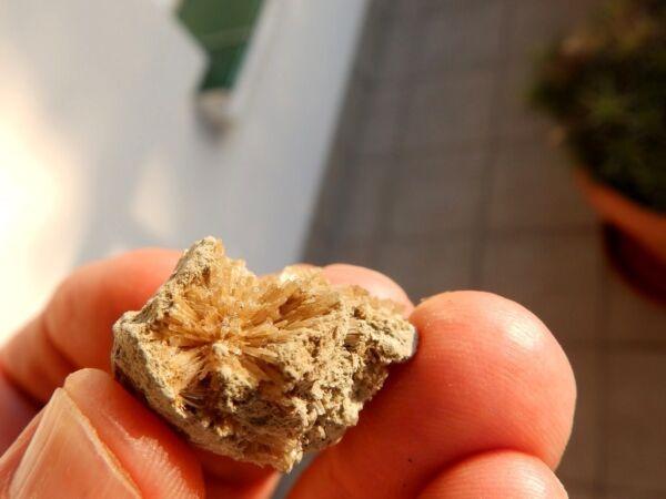 """Caritativo Minerales """" Fabulosos Cristales Aciculares De Aragonito De Pantoja - 9c16 """""""