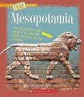 Mesopotamia by Sunita Apte (Hardback, 2009)