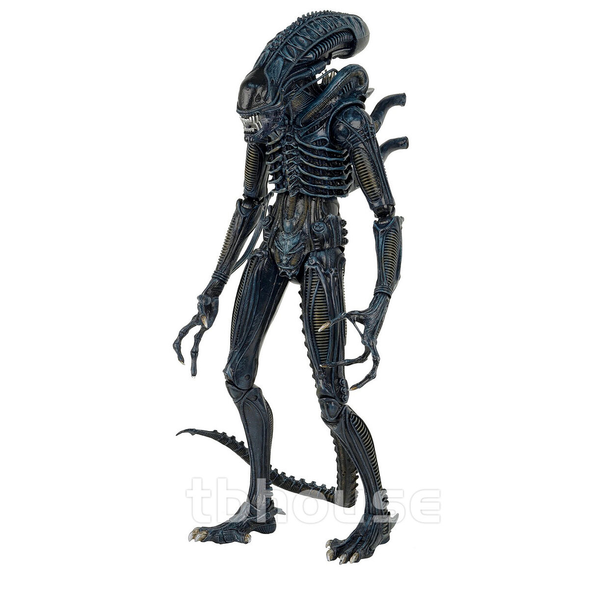 22    ALIEN WARRIOR blueE figure 1 4 SCALE XENOMORPH 1986 VERSION aliens movie NECA f863ca