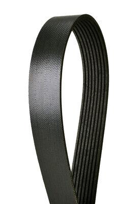 Continental 4070892 OE Technology Series Multi-V Belt
