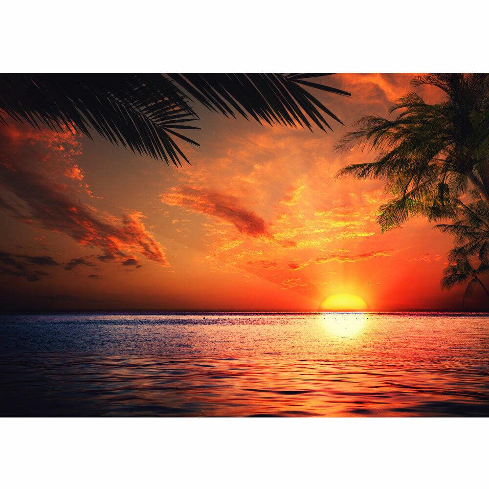 Fototapete Sonnenaufgang Meer Strand Beach Sonnenuntergang Palmen no. 117