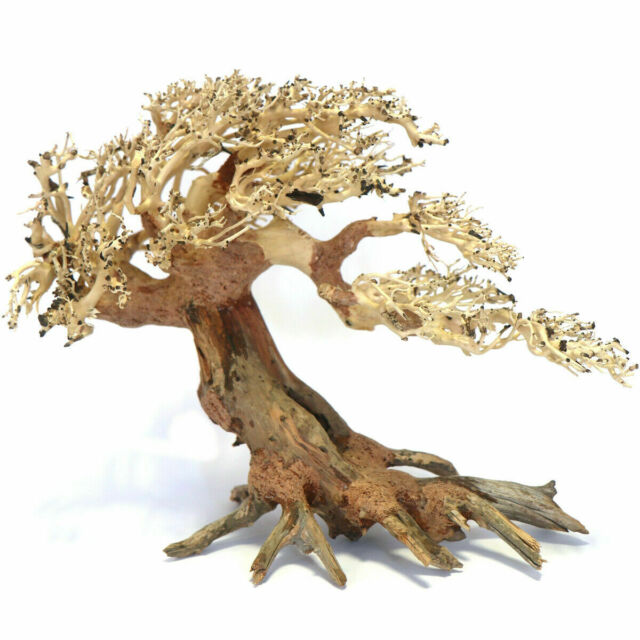 Aqua One Azalea Root Aquarium Decoration 30 40 Cm For Sale Online Ebay