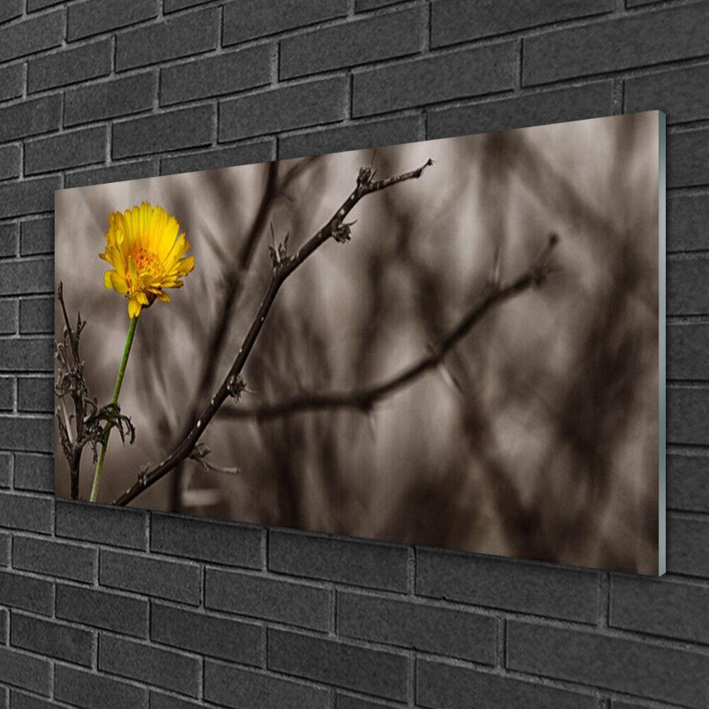 Image sur verre acrylique Tableau Impression 100x50 Floral Branche Fleur