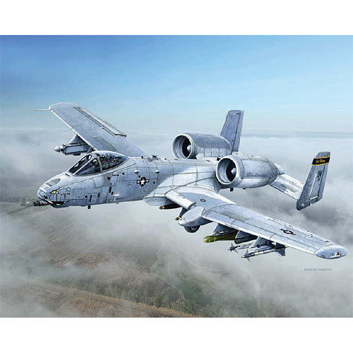ITALERI A-10c Blacksnakes 2725 1:48 Aircraft Model Kit