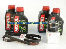 DUCATI MONSTER 600 620 KIT TAGLIANDO FILTRO OLIO + MOTUL 5100 10W40 + CINGHIE