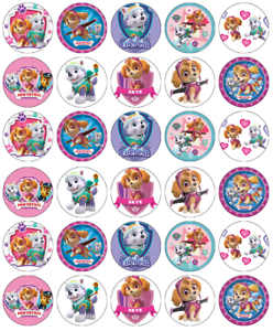 Paw Patrol Skye Everest 30 Cupcake Toppers Edible Wafer Paper Fairy Cake Toppers