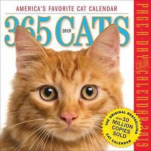365-Days-of-Cats-Desk-Calendar-2019-Animals-Pets