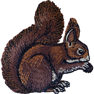 Squirrel-Patch-Iron-Sew-On-T-Shirt-Jacket-Jeans-Dress-Embroidered-Animal-Badge