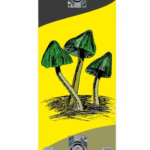 Best Sporting Skateboard Arts complètement Board holzboard ALU-Axe Résistant 100 Kg