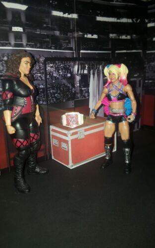 WWE Wwf Ecw WCW custom made BACK STAGE Area
