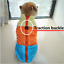 Chihuahua-Puppy-Sweater-Coat-Clothes-For-Small-Pet-Dog-Warm-Clothing-Apparel thumbnail 4