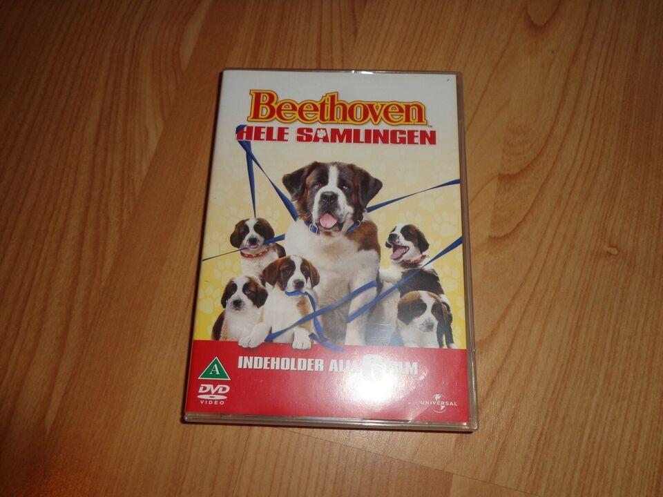 indiana jones, Lassie, Beethoven