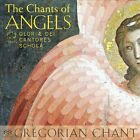 The Chants of Angels Super Audio Hybrid CD (CD, Sep-2011, Gloriae Dei Cantores)