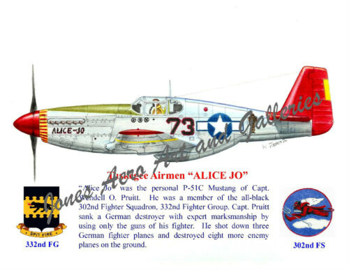 "Tuskegee Airmen Capt Wendell Pruitt/'s P-51 Mustang /""Alice Jo/"" by Willie Jones Jr"