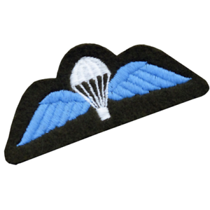 Royal Air Force Bullion Parachute Qualification Wings