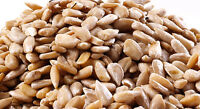 Sunflower Seeds, Raw Hulled-5 Lbs.-bulk-see Store For More Sizes