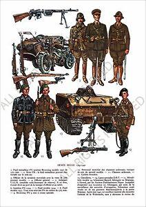 PLANCHE-UNIFORMS-PRINT-WWII-Armee-Belge-Belgique-Belgian-Army-Belgium-1939-1940