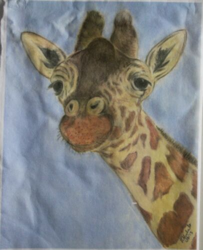 Giraffe T-Shirts Children and Adult Sizes 3 Unique drawn Designs