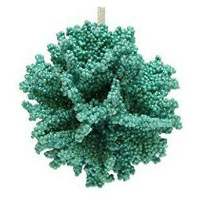 December Diamonds Nautical Coastal Wheel Starfish Seashell Coral Ornament