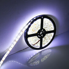 10M 2×5M Strip Light SMD 3528 300 led DC 12V Lamp Flexible Waterproof Cool White