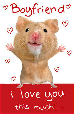 Boyfriend Valentine's Day Card Hamster Wobbly Eyes Valentines Greeting Cards
