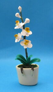 Topf Puppenhaus Miniatur Garten Zubehör 55 1:12 Maßstab Mehrfarbig Orchidee