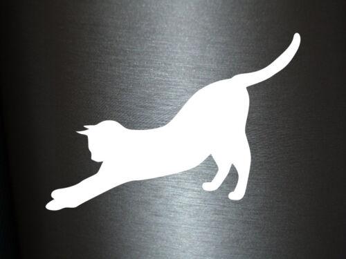 1 x Plott Aufkleber 003 Katze Cat Cats Katzen Tier Tierwelt Sticker Tuning Fun