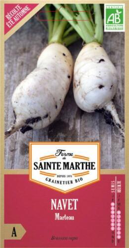 Graine Bio Sachet Semence Biologique AB Ferme de Sainte Marthe NAVET Marteau