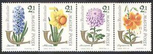 UNGHERIA-1963-Timbro-Giorno-Fiori-Piante-NATURA-Tiger-Lily-4v-Set-STP-n39962